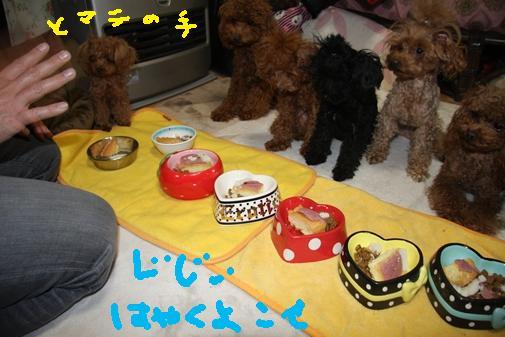 142_R_20110112122720.jpg