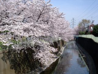 鎌倉橋 4