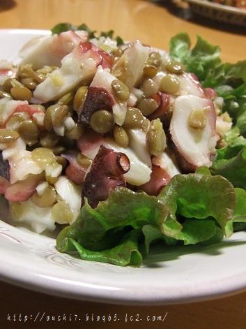 たことレンズ豆のサラダ