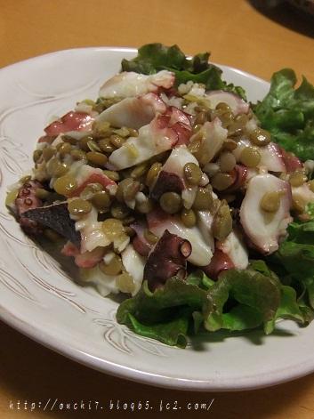 たことレンズ豆のサラダ1