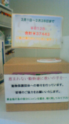 201303071152000.jpg