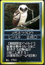 メガネフクロウ