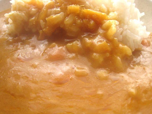 生姜のカレー