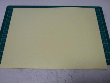 sP1230384.jpg