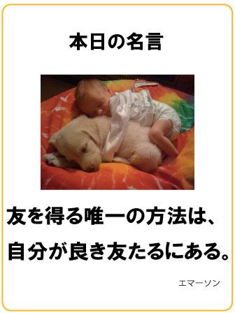 名言0416