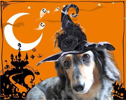 halloweenレイヤー統合