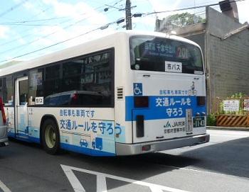 P1100385.jpg
