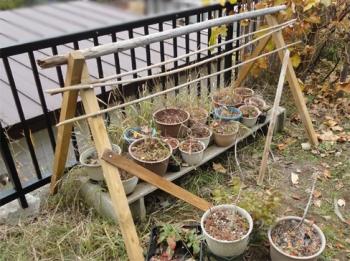 2013 鉢植えズの雪囲い骨格