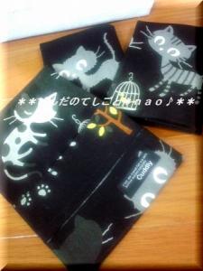 orderneko2.jpg