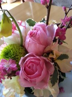 花カフェの花