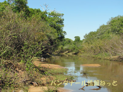Rio Abobral