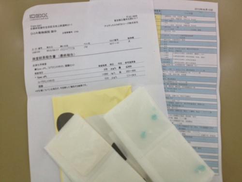 検査結果と抗生剤