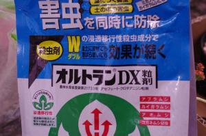 022_convert_20131209194332.jpg