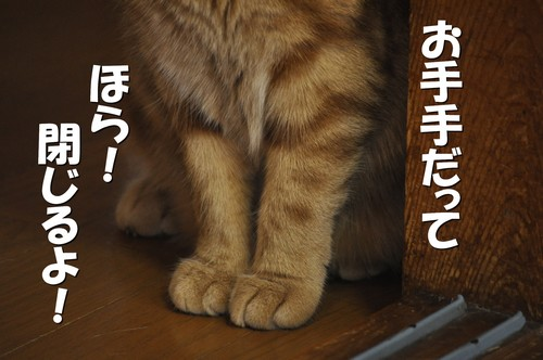 010_20120409165504.jpg
