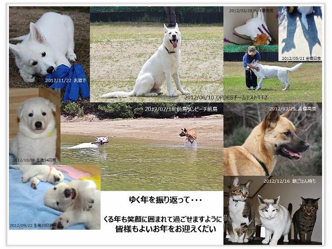 ぱうがすき2012ダイジェスト