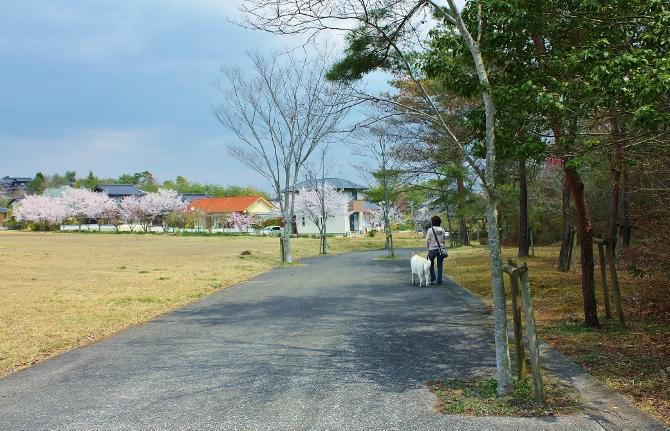 吉備高原のんびり散歩