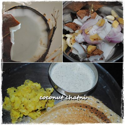 coconut chatni