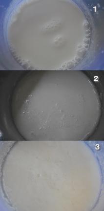 ヨーグルト酵母3
