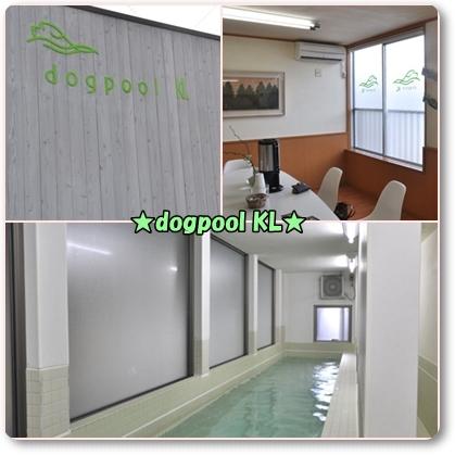 ドッグプールkl 設備