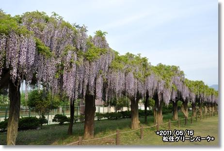 松任グリーンパーク 073