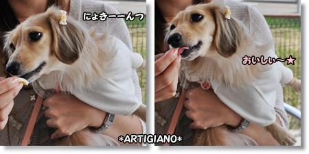 アルティジャーノ2-1