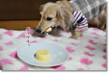 ケーキ 014