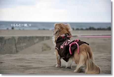 松任海浜公園 086