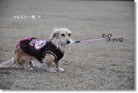松任海浜公園 015