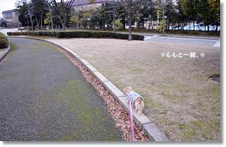 松任運動公園 139