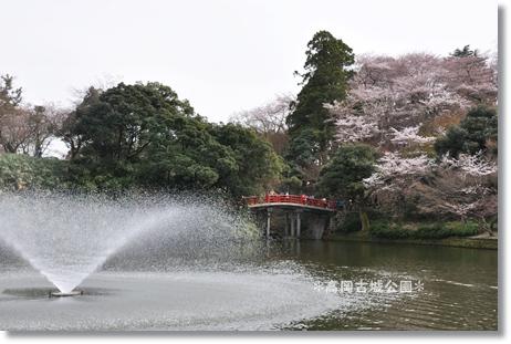 2012高岡古城公園 113