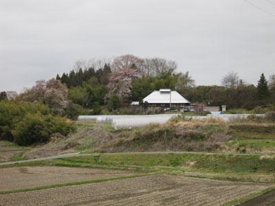 1204須賀川の春