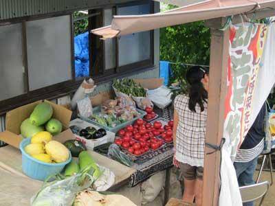 1208野菜販売所