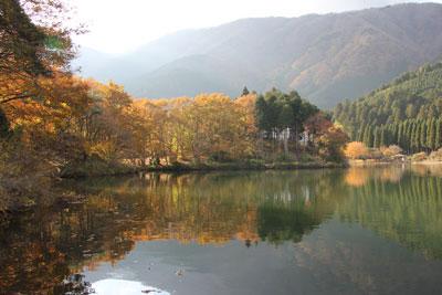 1211田貫湖湖畔