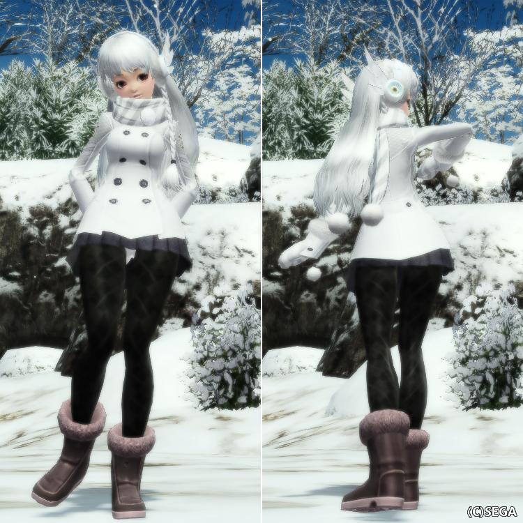 アークスコートF雪1