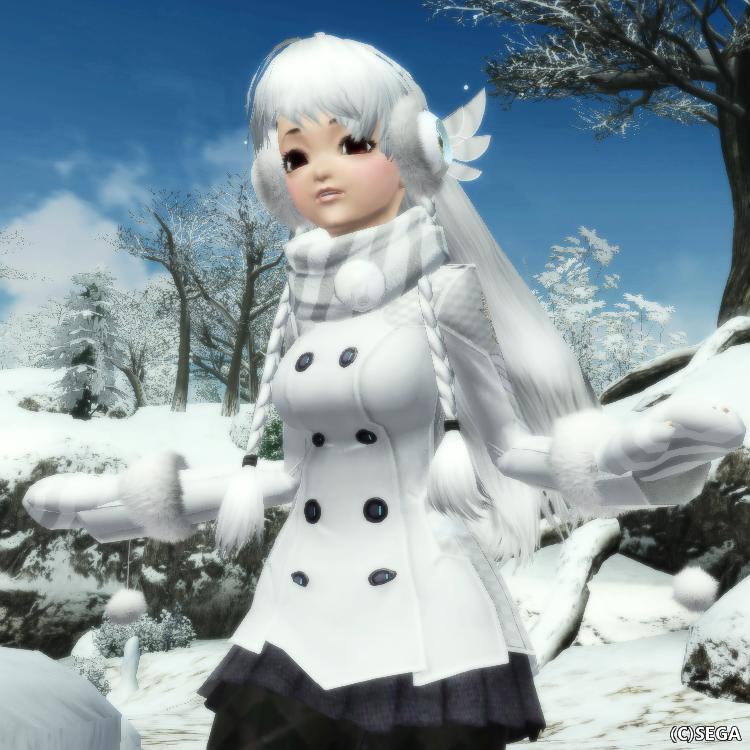 アークスコートF雪2