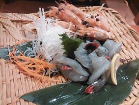 tenshinoebi.jpg