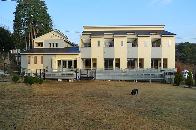 2010 02 19  (2)