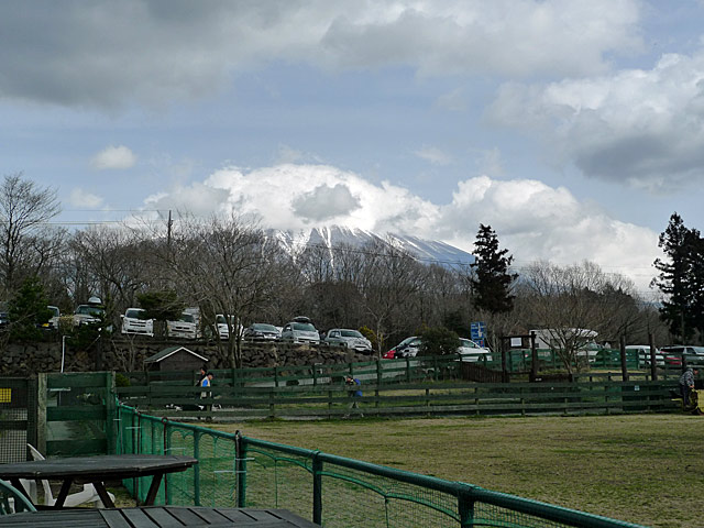 2010 03 13