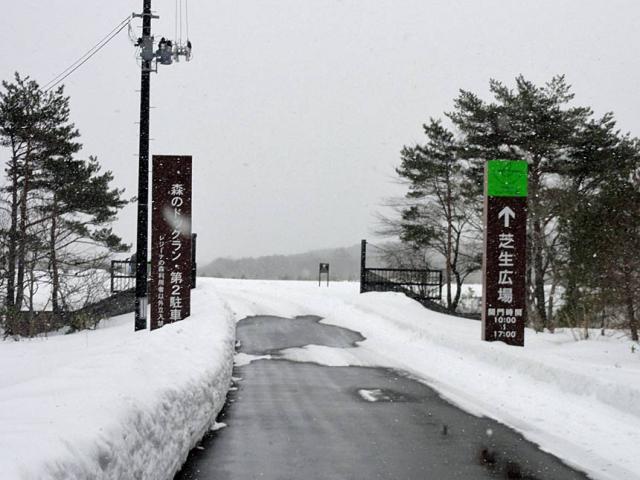2011-02-11--(26).jpg