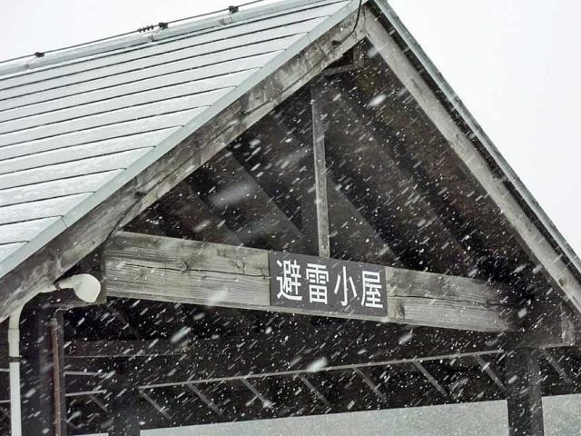 2011-02-11--(33).jpg