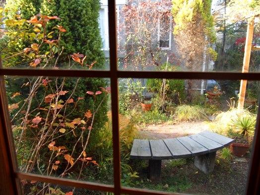 my-garden 107 (3)