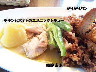 チキンとポテトのエスニックシチュー