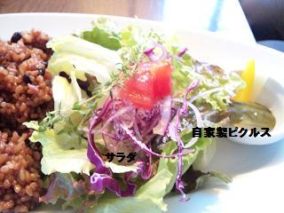 玄米とサラダとピクルス
