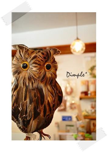 Dimple店内 (2)