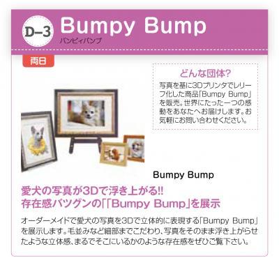 Bumpy_sc.jpg