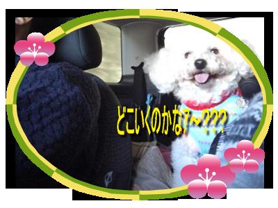CIMG5467_400sc.png