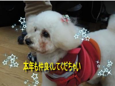 DSCN0146_001sc.png