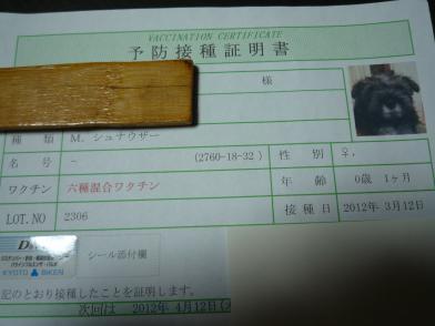 P1030270_convert_20120315201932.jpg