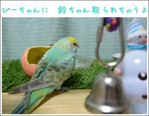 鈴ちゃんで遊ぶぴいちゃん2-2
