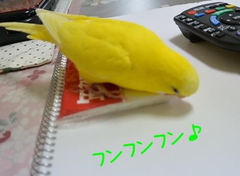 ティッシュ袋とぽぴ1-1